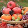 秋の味覚!果物の力でココロとカラダを整える!!|季節を楽しむ!親子でにこにこ☆Happyごはん